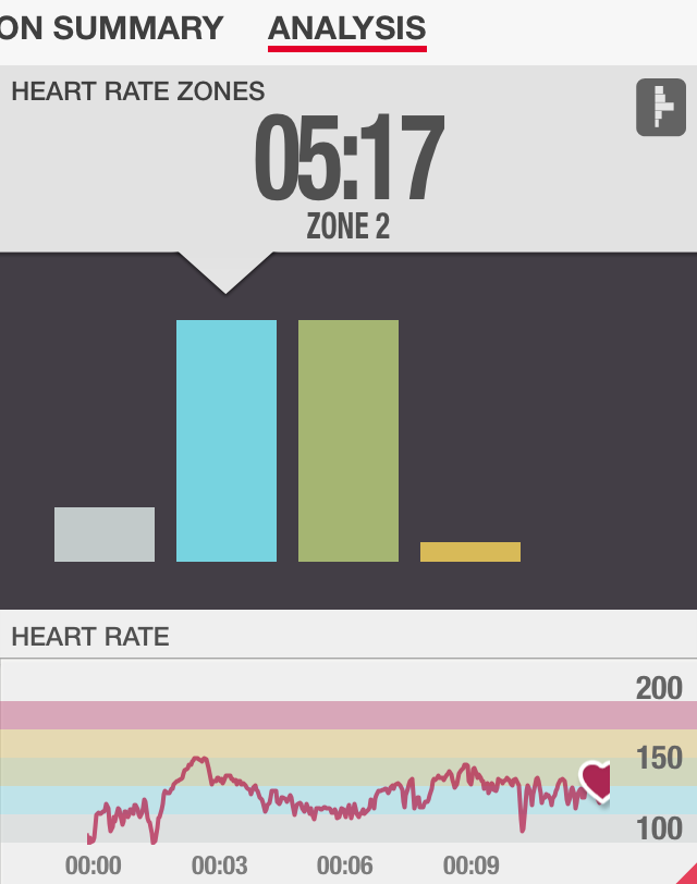 Ab Hammer Heart Rate Review