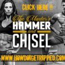 Does Hammer and Chisel Work? Workout Reviews (Complete List)