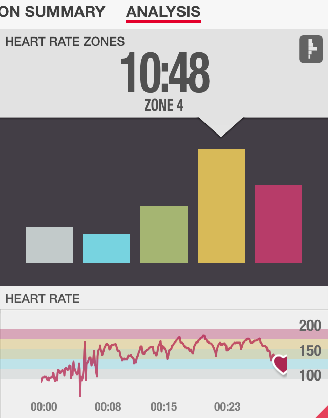 Hammer Conditioning Heart Rate Review