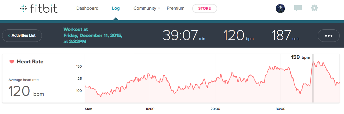 Hammer Power Heart Rate Review Fitbit