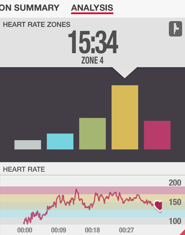 Max Hammer Strength Heart Rate Review
