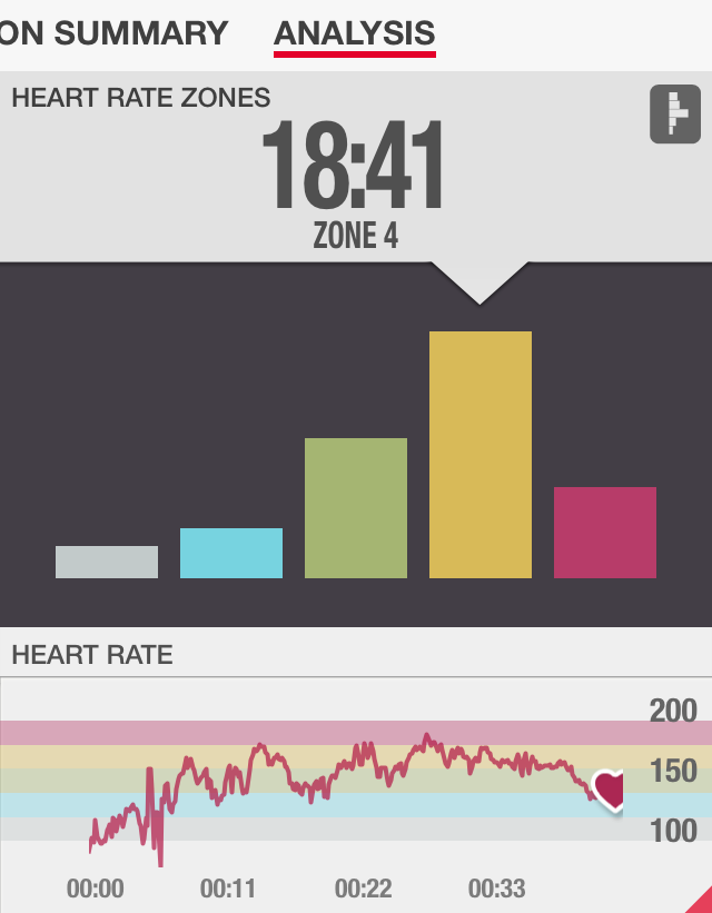 Total Body Hammer Heart Rate Review