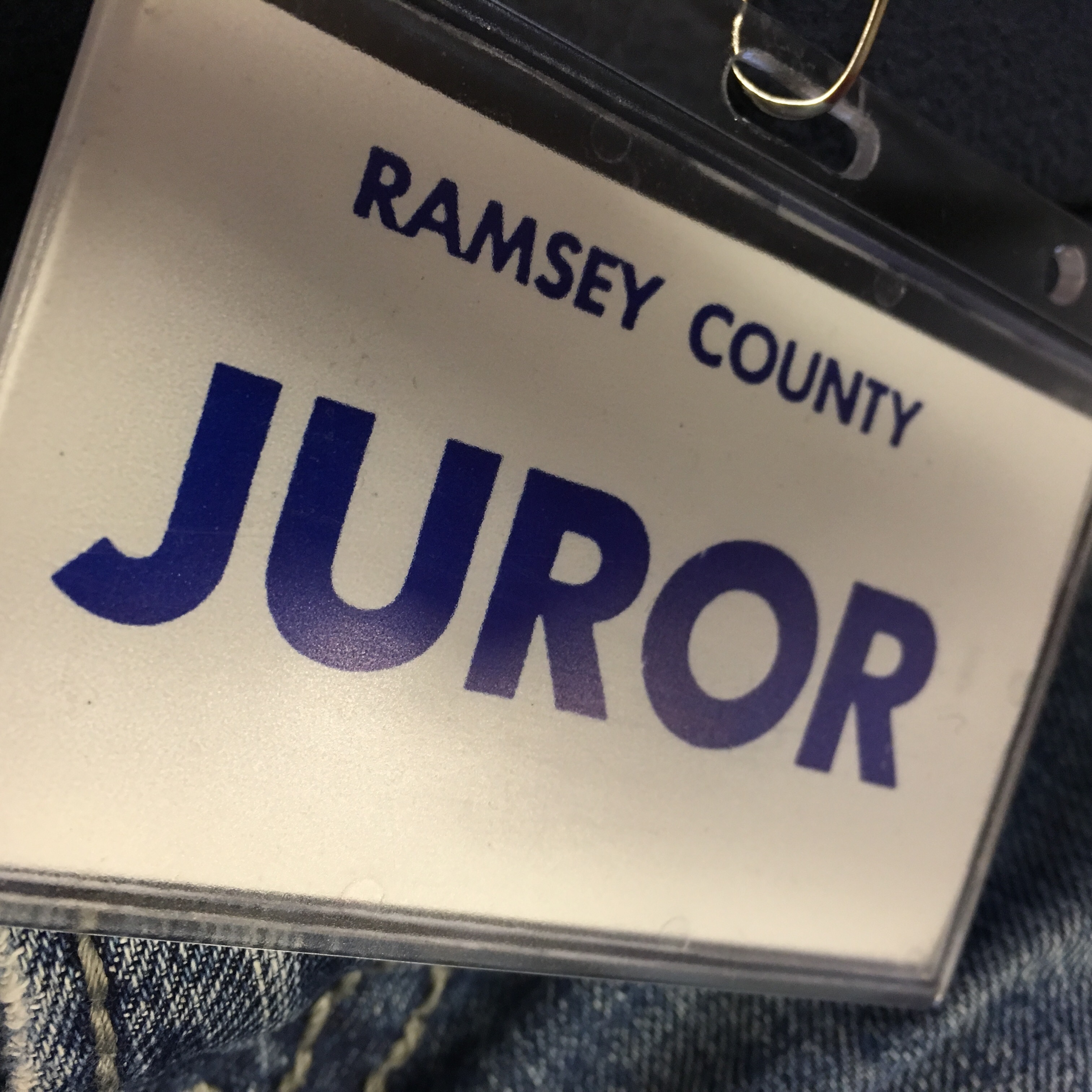 Official Juror Jury Duty