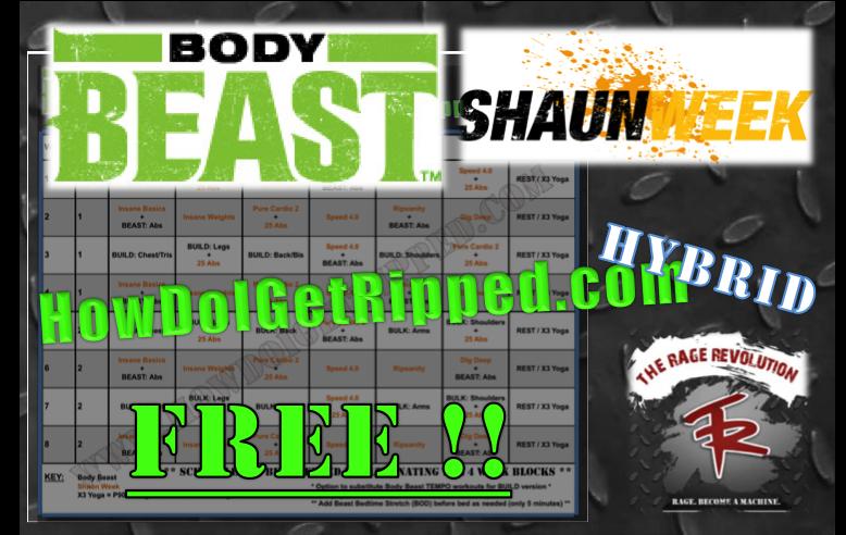 Body Beast Shaun Week Hybrid Workout Schedule